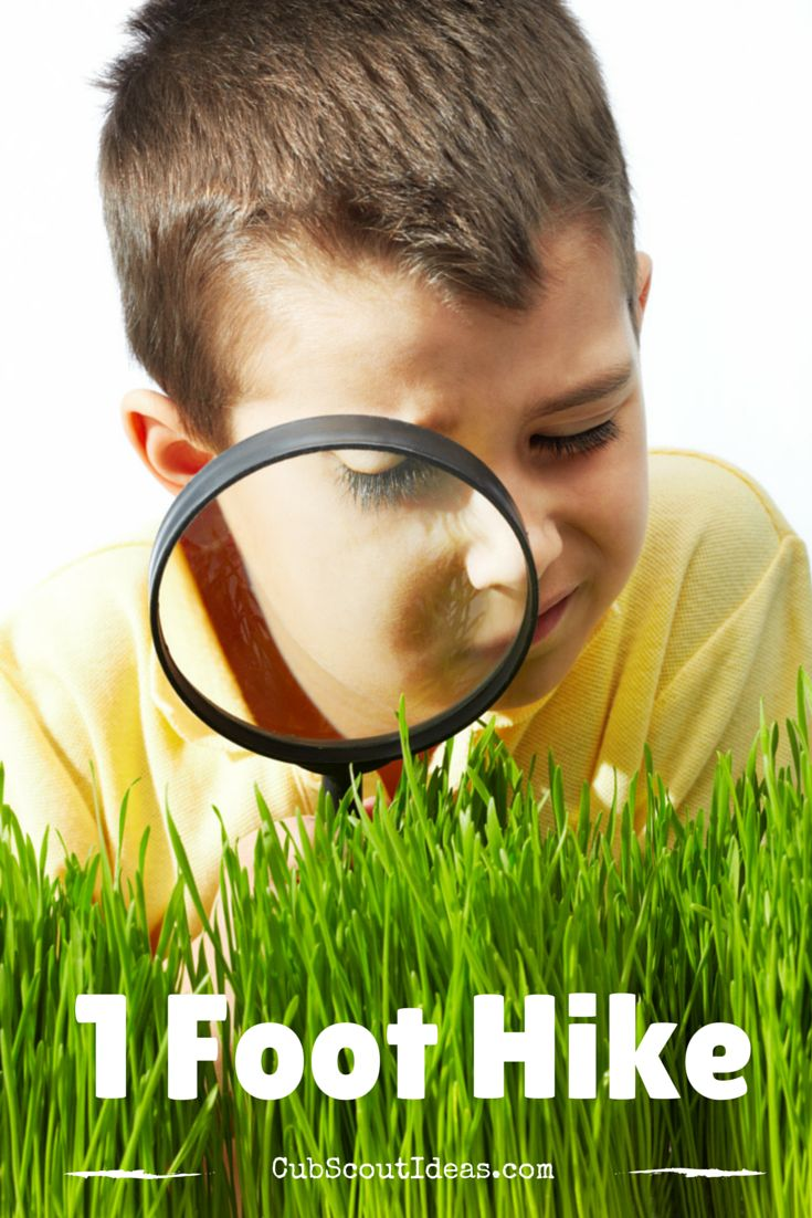 Here are some ways to conduct the 1-foot hike for the Tiger Cub Scout required adventure, Backyard Jungle.