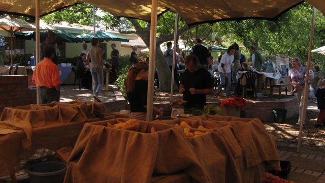 Stellenbosch Organic Farmers Market (Stellenbosch)