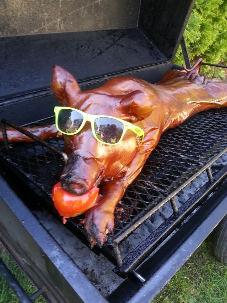 Ln fest :-) pig roast wedding reception ideas | visit totalfratmove com