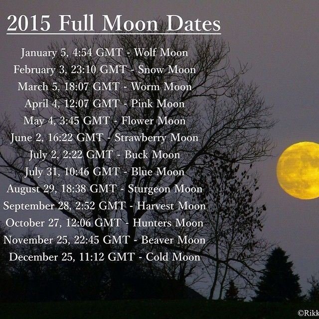 Full moon schedule for 2015. There is a Blue Moon on July 31st (how marvelous!). #moon #astronomy #calendar