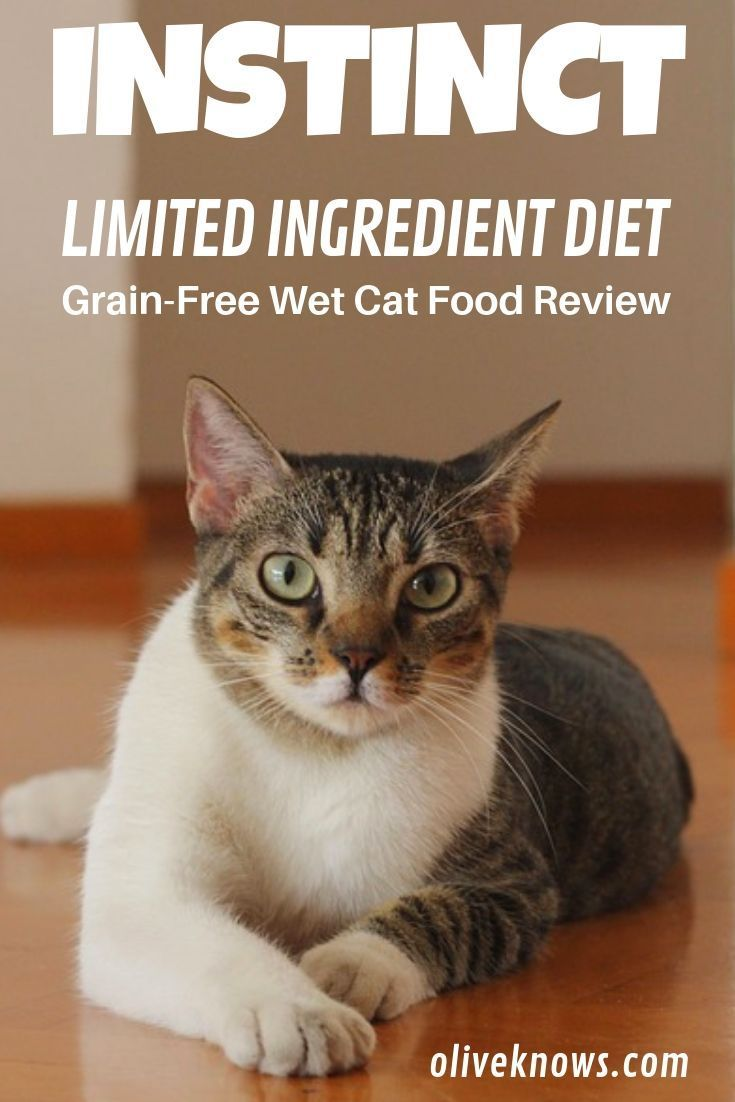 Instinct Limited Ingredient Grain Free Wet Cat Food Review Cat Food Reviews Cat Food Cats