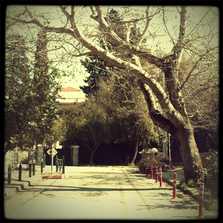 Kifissia is an area with an overwhelming amount of green, there's not a single street without at least one decades-old tree lending us its shadow. (Walking Athens / Route 19, Kifissia)