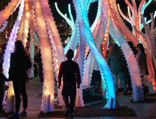 Arclight light installation, Vivid Sydney, light festival, light installation, green lighting, recyclable materials, recycled plastic, mangrove forest, Sydney, Australia,  green design, art installation, interactive art