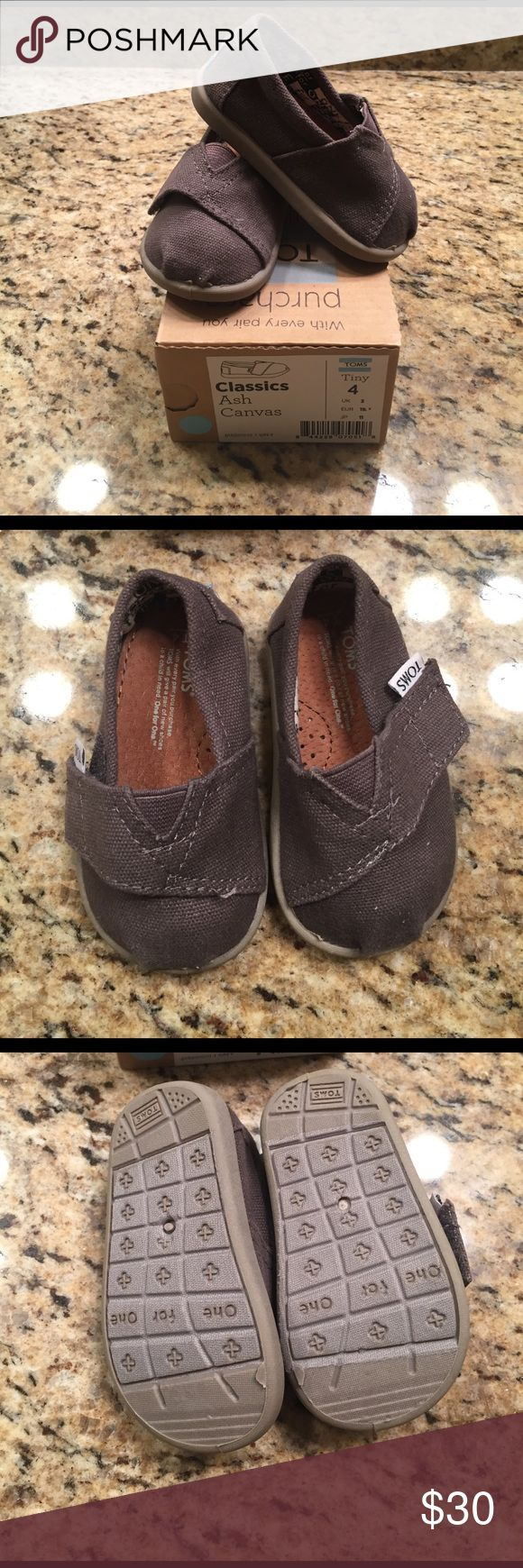 NWT Ash Canvas Tiny Toms NWT.  Ash Canvas. TOMS Shoes Baby & Walker