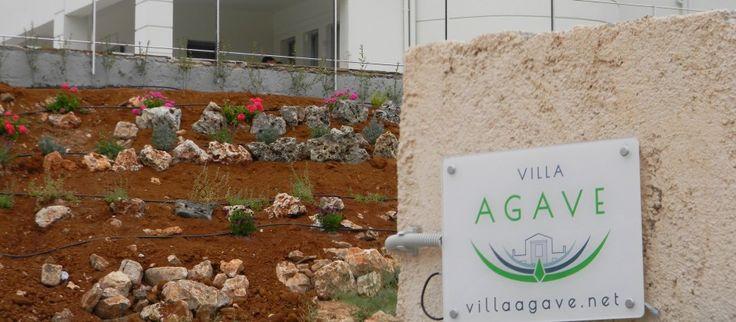 Villa Agave Crete   Your best holiday in Crete
