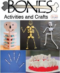 Skeletal system activity ideas for your human body unit from the Our Time to Learn blog and science workbook. Skeleton activities and bones crafts for ages 4-6, preschool, kindergarten, 1st grade, and homeschool.