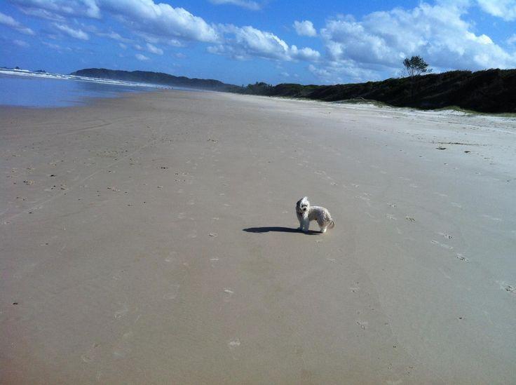 Run with Tiger Byron Bay