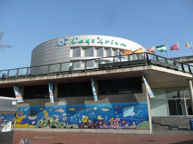Ecco un'altra tra le più famose attrazioni di Barcellona, l' Acquario.