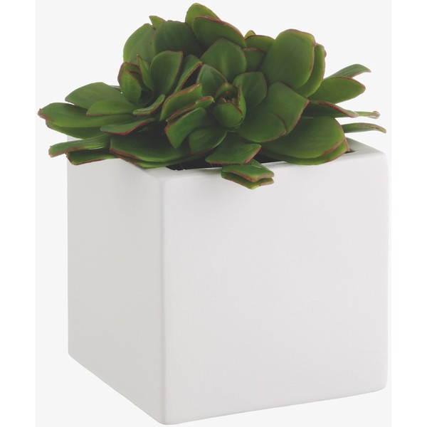 Floreo Green Plastic Succulent In Ivory Pot found on Polyvore.  I could use fake plants and pebbles  to do this Flowerpot