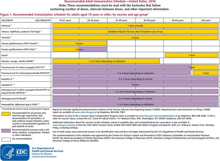 recommended adult immuization schedule