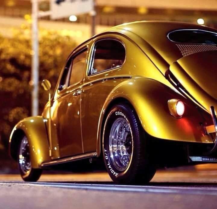 79 Best Bug Ideas Images On Pinterest