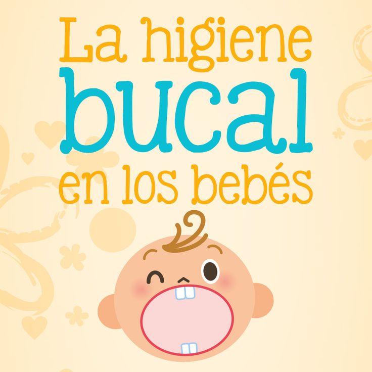 La higiene en los dientes de los pequeños depende de los padres. Comienza limpiando sus encías y sus primeros dientes con una gasa esterilizada. #Salud #Bebés