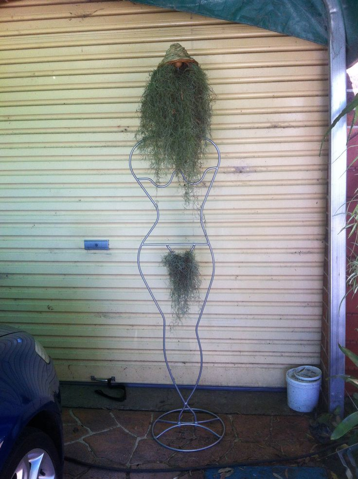 My garden Art - 'Natural Woman' or 'Sanotob' - (say no to Brazillians)