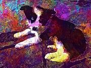 "New artwork for sale! - "" Border Collie Dog Peaceful Puppy  by PixBreak Art "" - http://ift.tt/2v6uq8O"