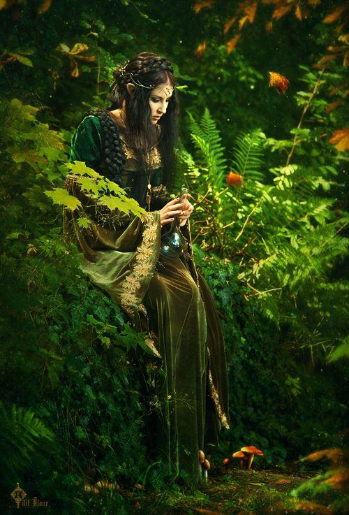 As mais antigas descrições de elfos vêem da mitologia nórdica. Eram chamados álfar, de singular álfr. Outros seres com nome etimologicamente relacionados a álfar sugerem que a crença em elfos não se restringe aos escandinavos, abrangendo todas as tribos germânicas.