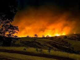 2015 Bush Fires In Adelaide Hills - Google Search