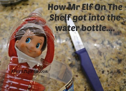 elf of the shelf day five how me got into the water bottle  , Elf on the Shelf Ideas, What to do with an elf on a Shelf, Easy Elf on the She...