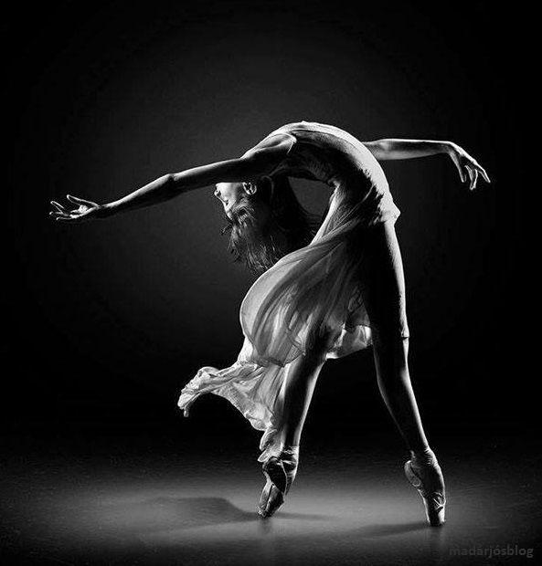 """""""A tánc a lélek érzéseit a test mozdulataival fejezi ki, és méltó arra, hogy a zenéhez és a költészethez hasonló szerepet töltsön be."""" Cesare Negri (www.facebook.com/madarjosblog/photos)"""