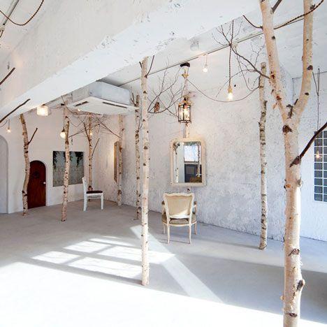 pour installer une forêt de bouleaus tant aimés à la maison, il conviendrait de la vider dabord (la maison, pas la fôret) (via Onico Hair and Nail beauty salon with indoor trees by Ryo Isobe)