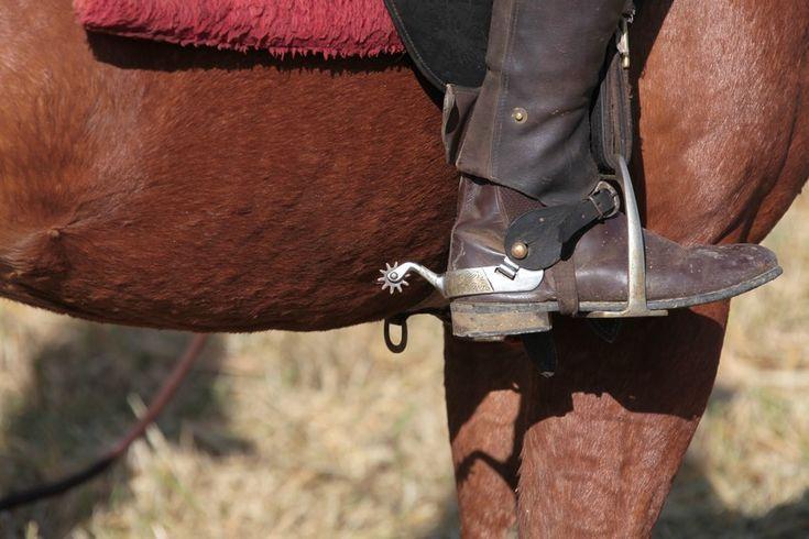 Stockman De La Brousse De Nouvelle Cal 233 Donie Avec Bottes
