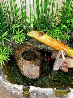 raccaryusui: お蕎麦屋さんの店頭にあった、 小さな池とししおどし。 金魚と小魚が泳いでいた。
