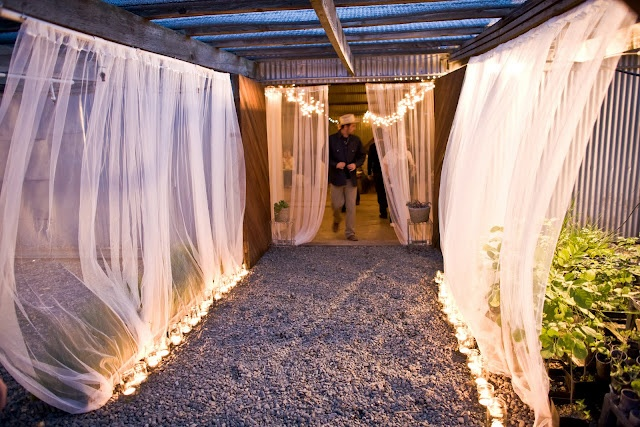 Get a bunch of sheer curtains at  hotel outlet (and lights after xmas) Enjoy Events Co. // Celebration, Planning & Design in the Bay Area // Emily Read Bentley &: big barn bash