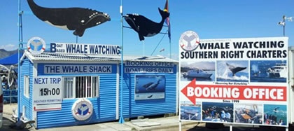 The Whale Shack - Southern Right Charters booking Office - Whale Watching Hermanus