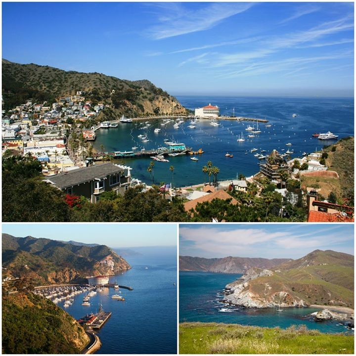 Catalina Island, California: Desert Foliage and Secluded Coves in the Pacific Ocean   3-Star 19th-Century Hotel in Catalina Islands, Avalon, CA for $64!  Check it out! ↘ http://www.travelpirates.com/?p=2100 #travelpirates