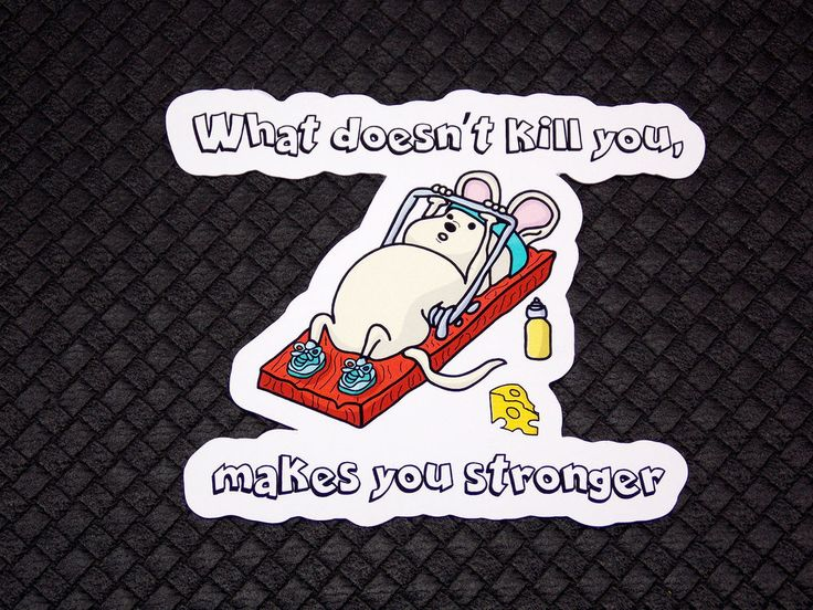 What doesn't kill you makes you stronger Mouse Trap Gym Refrigerator Magnet