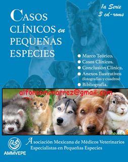 LIBROS MEDICINA: CASOS CLÍNICOS EN PEQUEÑAS ESPECIES perros gatos