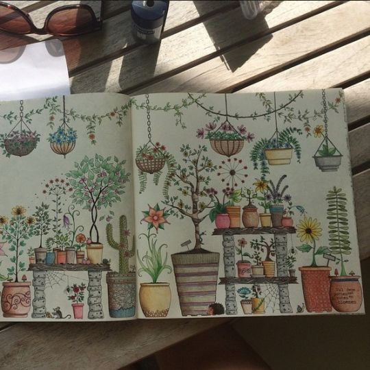 Best 25 Secret Garden Colouring Ideas On Pinterest
