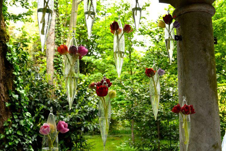 Suspended multicolored tulips