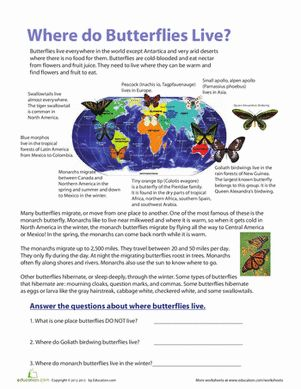 Go from a butterfly beginner to an expert with this worksheet, full of pretty butterflies and tons of information about where butterflies live.l