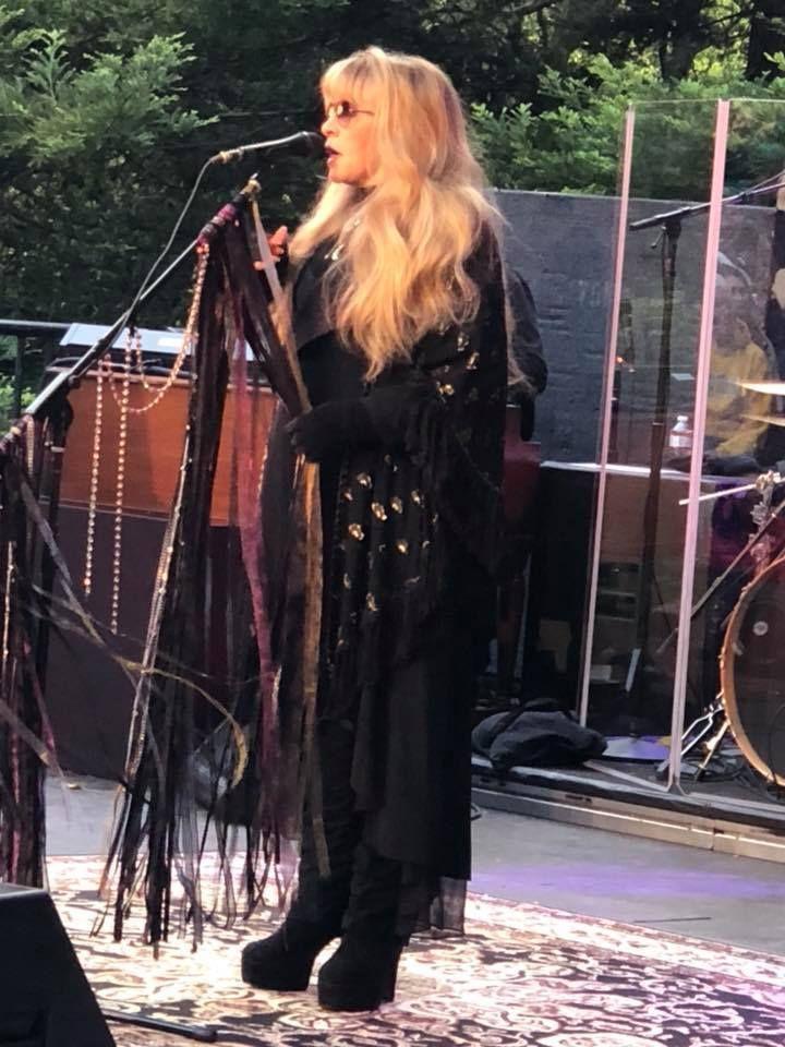 Pin By Cheryl Aubuchon On Stevie Nicks Stevie Nicks Fleetwood Mac Stevie Nicks Stevie