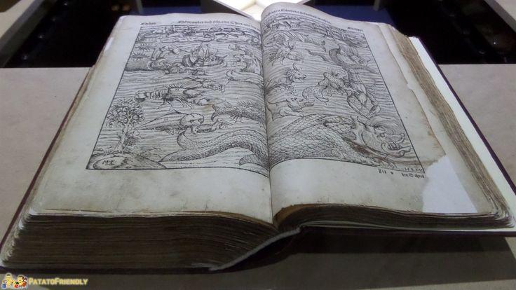 Galata Museo del Mare a Genova - Un antico libro dedicato ai mostri marini