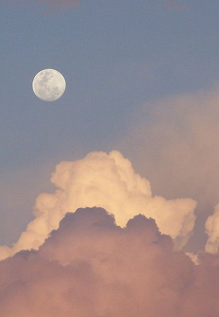 Tickled Pink Moon - taken in 2005, in Western Australia.