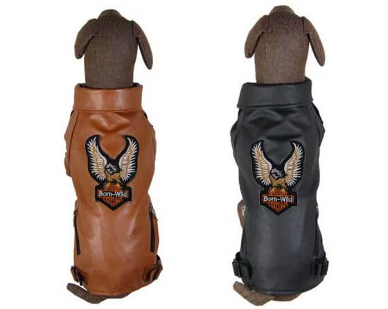==> [Free Shipping] Buy Best 1pcs/lot large dogs fashion leather jackets clothing big dog Eagles design sweaters pet costume pets supplies Online with LOWEST Price | 32358103018