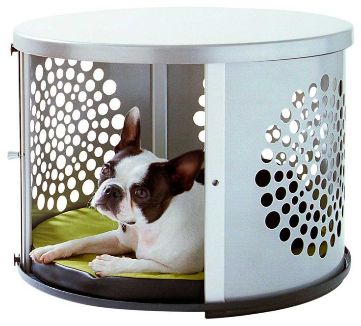 Dog-Furniture-Design-Ideas ~ http://www.lookmyhomes.com/smart-in-choosing-dog-furniture/