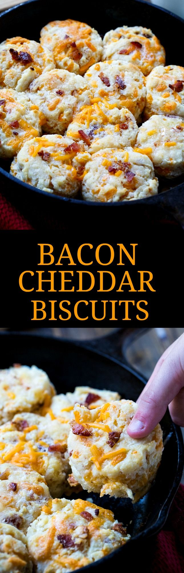 Bacon Cheddar Biscuits | Recipe | Bacon, Cheddar and Biscuits