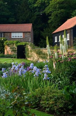 Herbaceous border planted with iris 39 jane phillips for Herbaceous border design examples