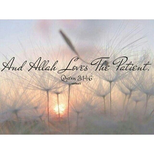 May Allah make us of those who patiently persevere