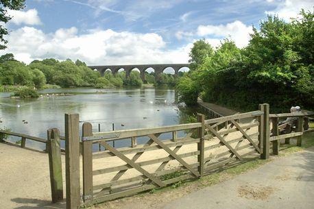 Manchester's best parks