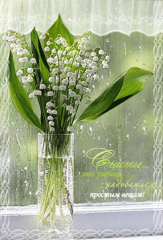Пожилого человека, картинки с весенними цветами красивые с надписями