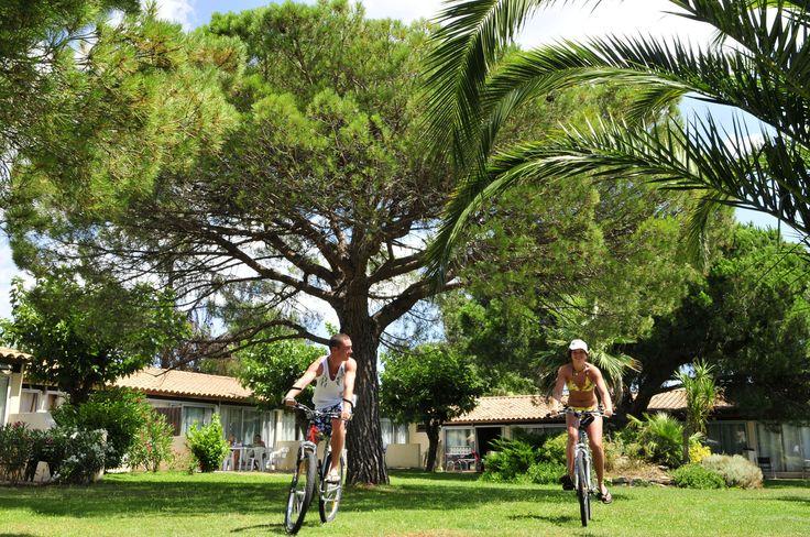 La résidence le Mas Blanc à Pérols. Goelia pour vos vacances en France