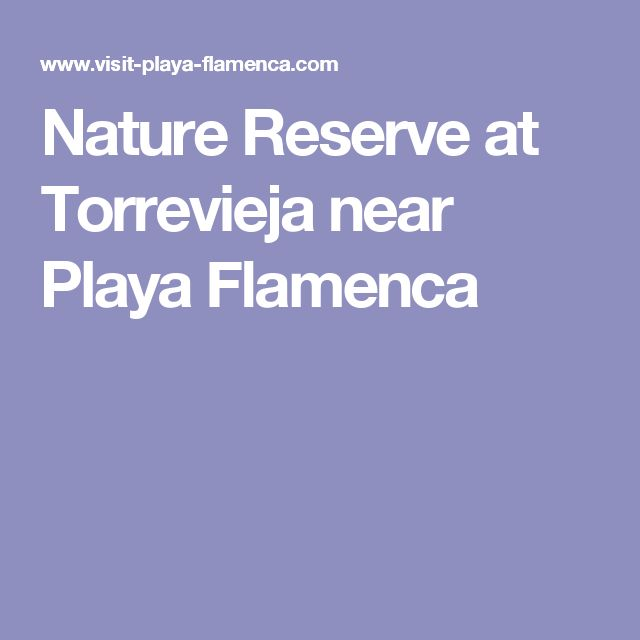 Nature Reserve at Torrevieja near Playa Flamenca