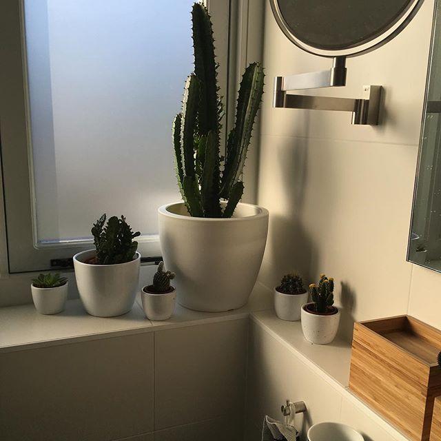 #bathroom #cactus #plants #green #wood #blackandwhite #interior #interiør #interiordesign #interior4all #scandinavian #scandinaviandesign #jaren30 #jaren30huis #rebuilding #renovating #renovation #klushuis #badkamer #styling #ikea #hm #homedecor #homedesign