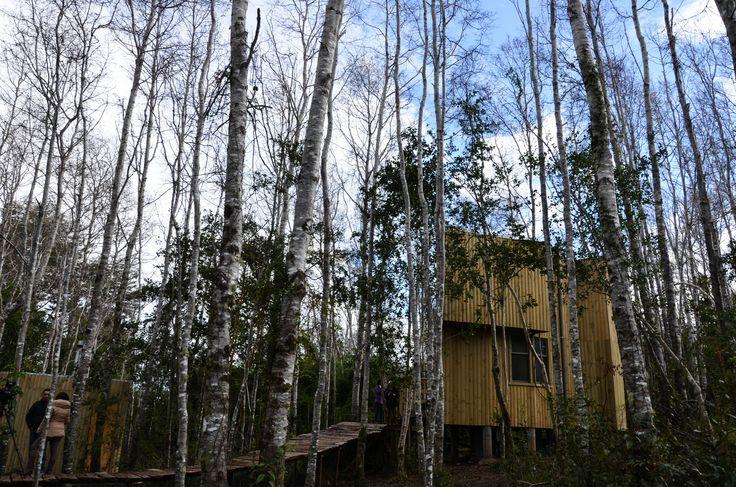 Nidales del Parque Reussland, Lago Lanalhue, Chile by Architect Susana Herrera & FactoriaDesign