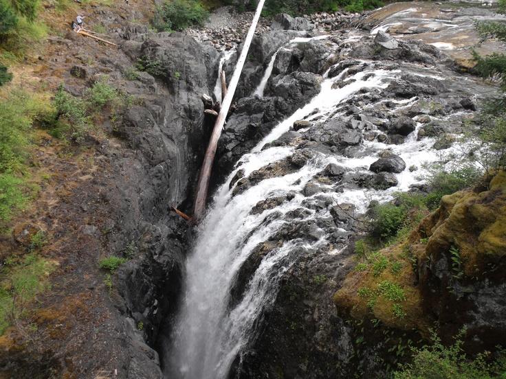 Englishman River Falls near Errington, BC.