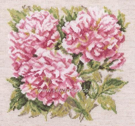 Buy+Shrub+Roses+Cross+Stitch+Kit+Online+at+www.sewandso.co.uk