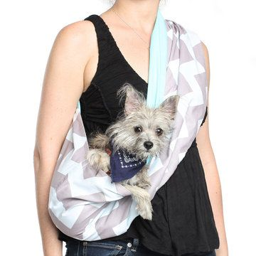 Pet Slings: A Wearable Way To Carry Your Pet